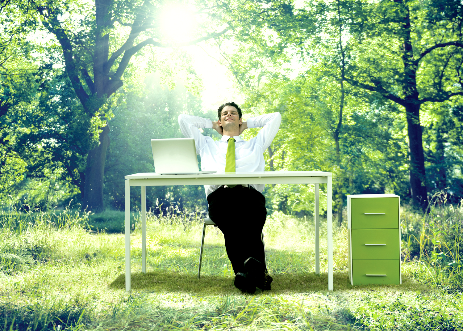 A man with a desk in the woods