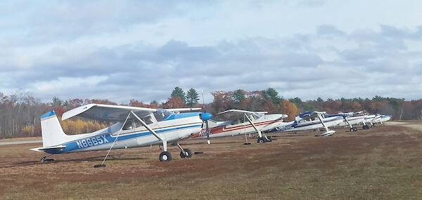 Small planes parked in a row on the grass.