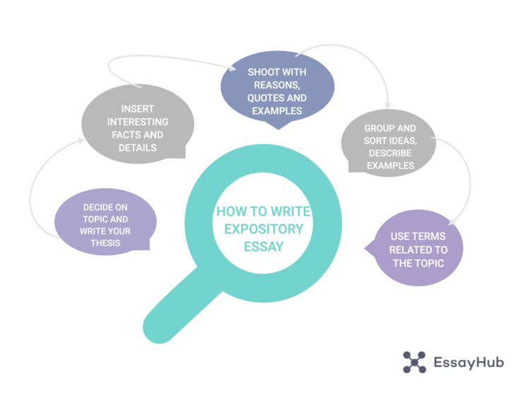 Expository Essay Structure Visualization