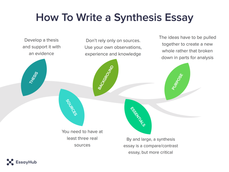 Infographics on synthesis essay writing