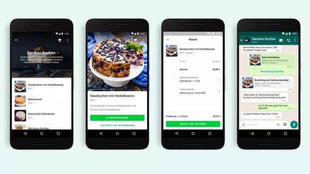 WhatsApp Senioren App Ueberblick