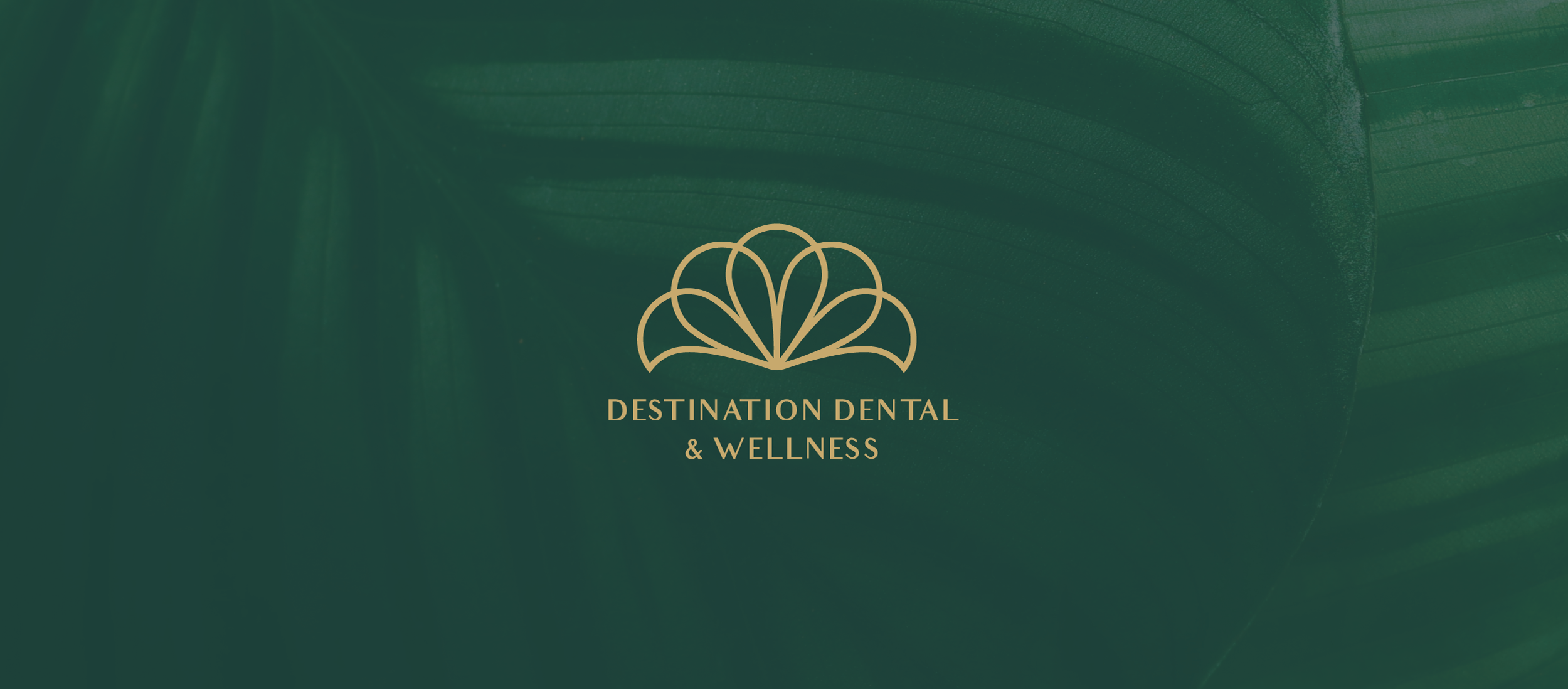 Destination Dental & Wellness Logo with a green leaf background.