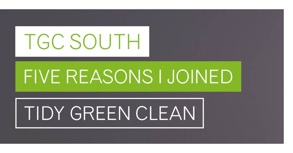 Why I'm a Master Franchisee: Five reasons why I joined Tidy Green Clean