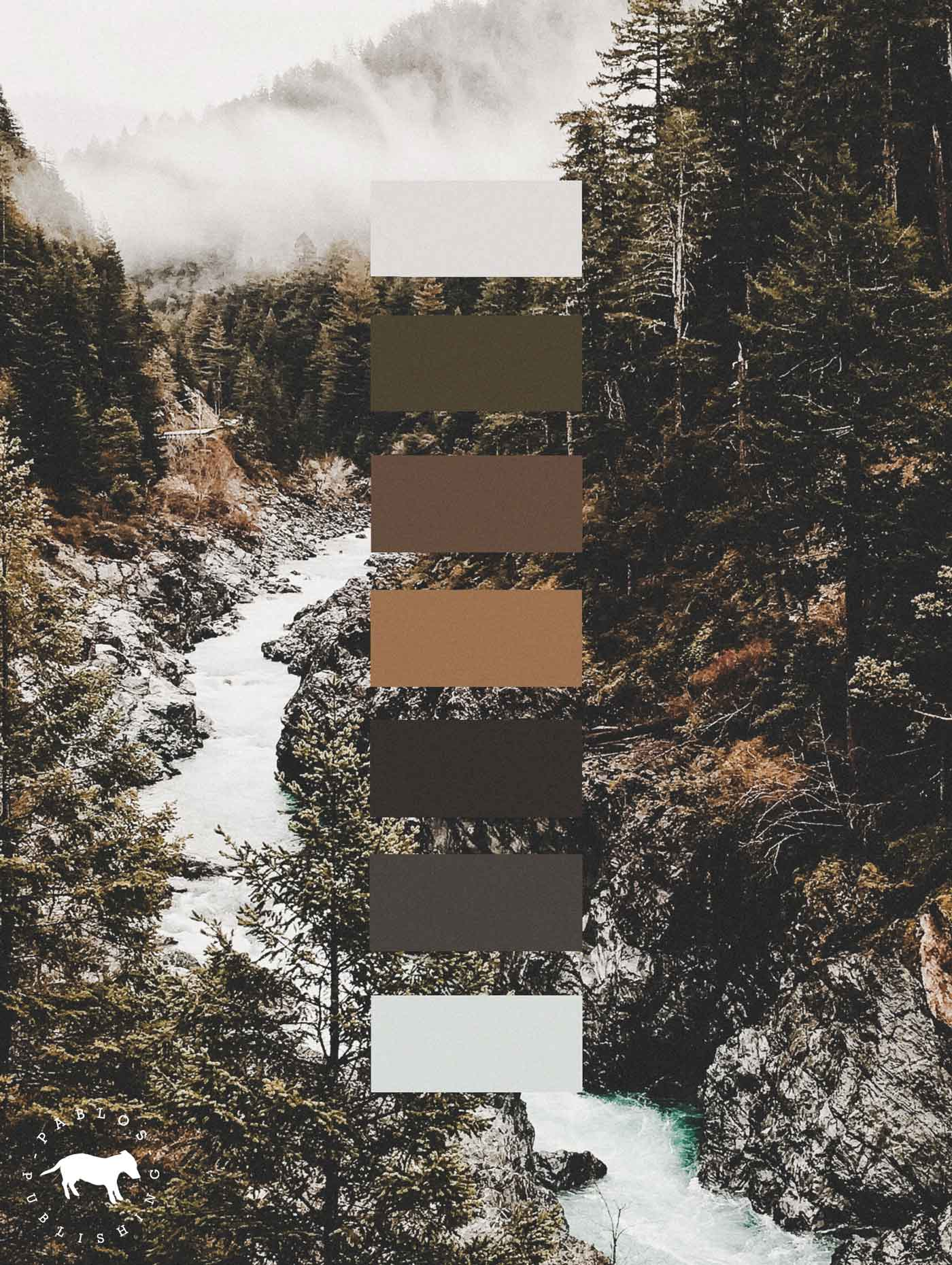 Color palette for branding project for Swiss publishing house