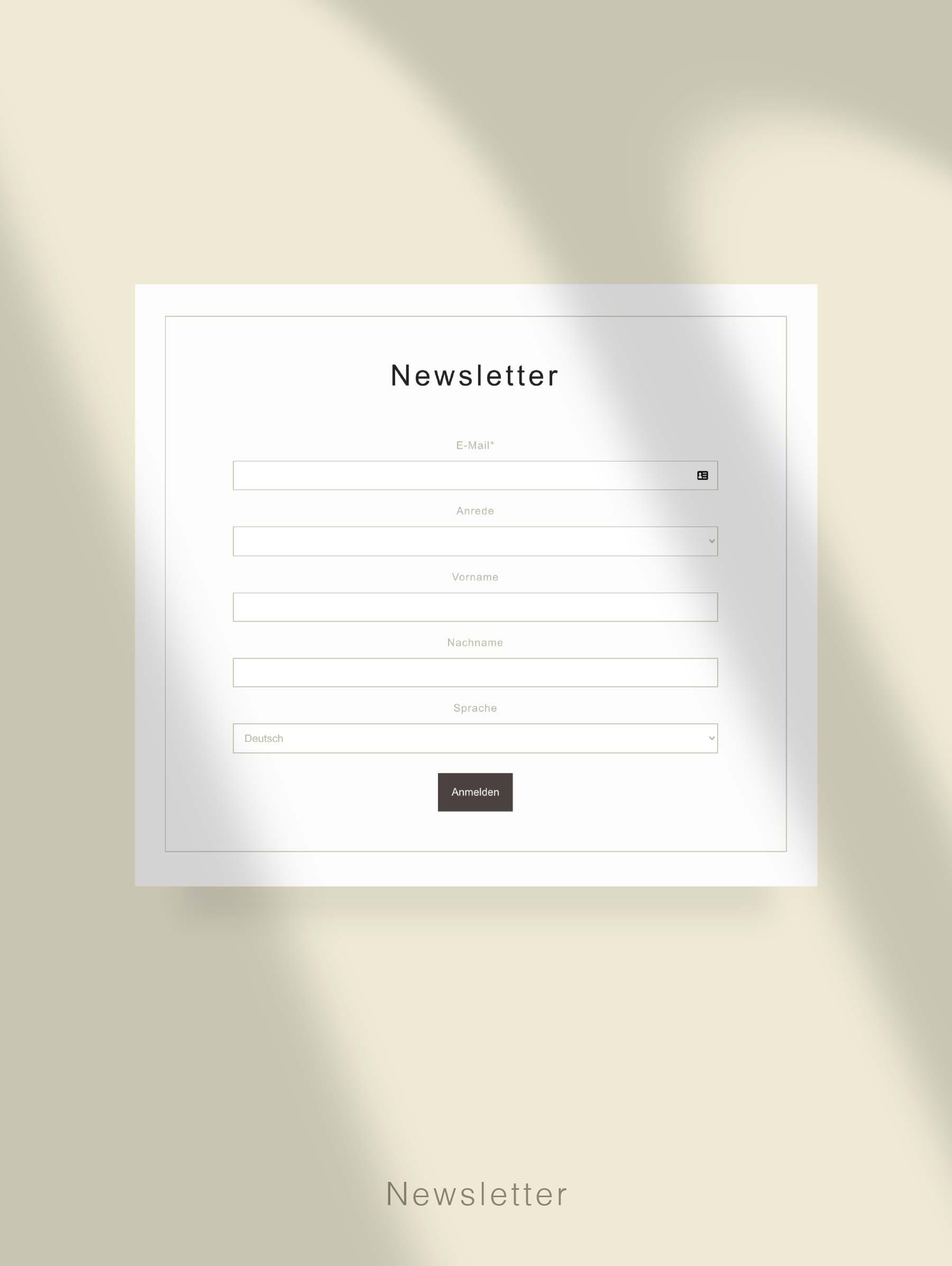 Newsletter Anmeldung - Entwicklung Webseite für Hotel Schweiz