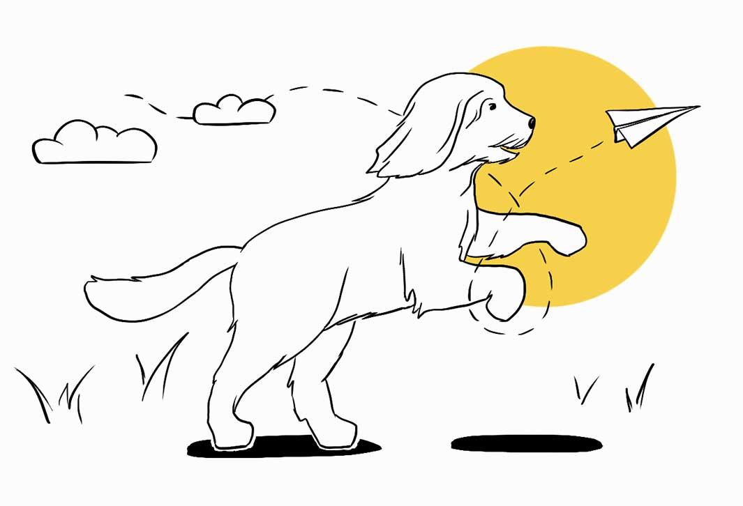 Namo Illustration Sully