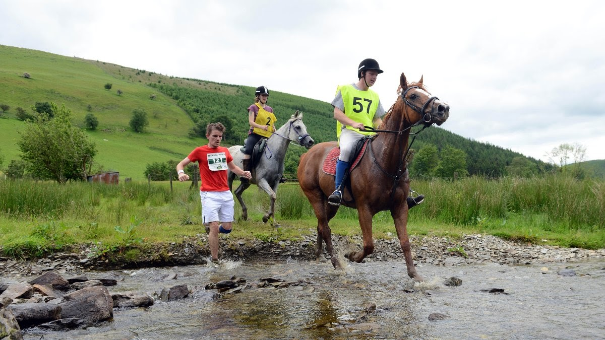 What We Learn When Humans Race Against Horses | Outside Online