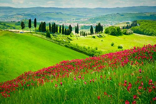 TuscanynearCertaldo