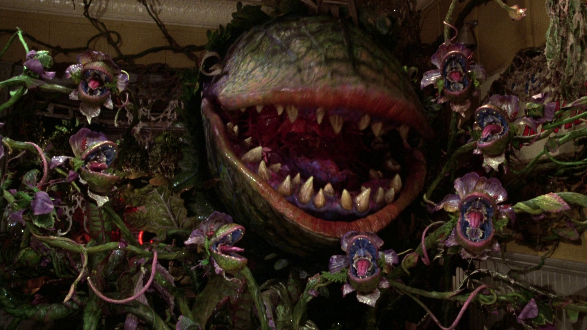 The World's Scariest Flowers... or what nightmares are made of.