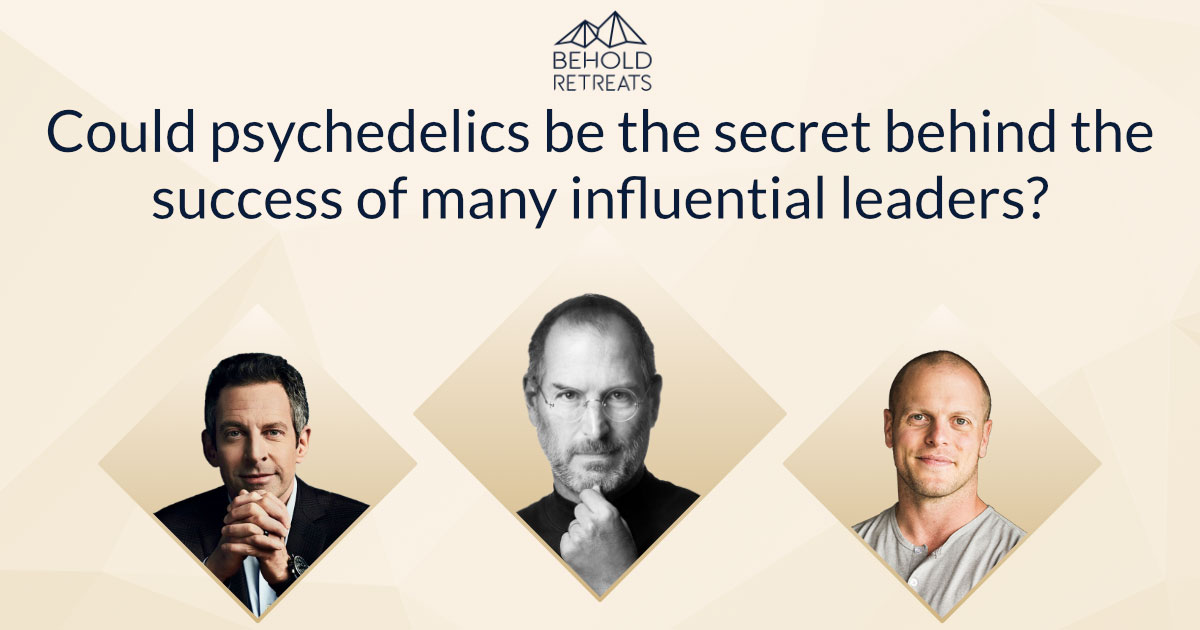 Psychedelics is the secret behind successful, influential leaders.Psychedelics boost neurogenesis and neuroplasticity. Behold Retreats, a wellness company that specialises in the therapeutic use of plant-based medicine to aid in personal and spiritual growth. Plant medicine luxury retreat, ayahuasca, psychedelics, psilocybin, 5-meo DMT. Science, infographics, research