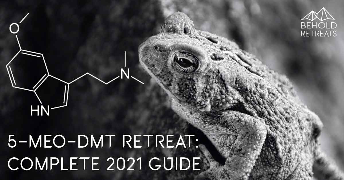 5-MEO_DMT Retreat:Complete Guide. Behold Retreats, a wellness company that specialises in the therapeutic use of plant-based medicine to aid in personal and spiritual growth. Plant medicine luxury retreat, ayahuasca, psychedelics, psilocybin, 5-meo DMT. Science, infographics, research