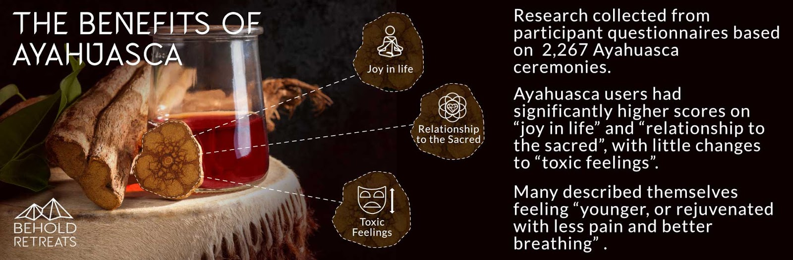 The benefits of Ayahuasca. Behold Retreats, a wellness company that specialises in the therapeutic use of plant-based medicine to aid in personal and spiritual growth. Plant medicine luxury retreat, ayahuasca, psychedelics, psilocybin, 5-meo DMT. Science, infographics, research