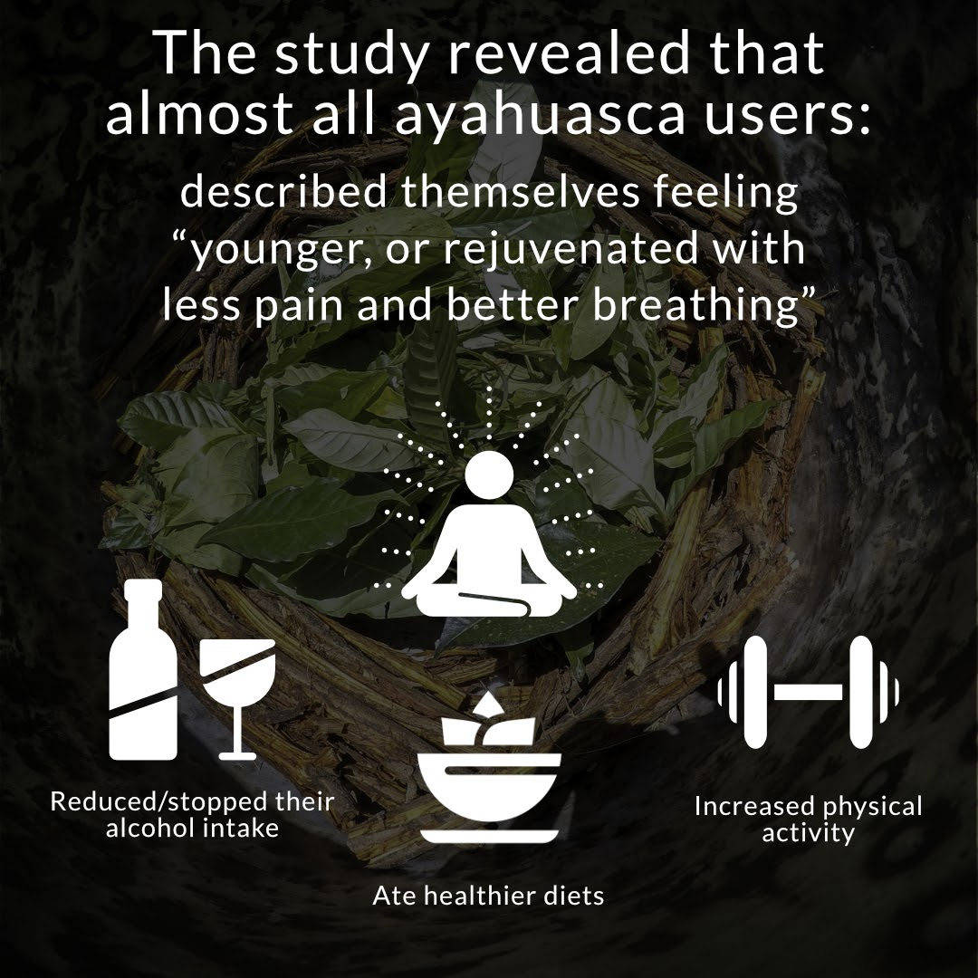 Ayahuasca treatment. Behold Retreats, a wellness company that specialises in the therapeutic use of plant-based medicine to aid in personal and spiritual growth. Plant medicine luxury retreat, ayahuasca, psychedelics, psilocybin, 5-meo DMT. Science, infographics, research