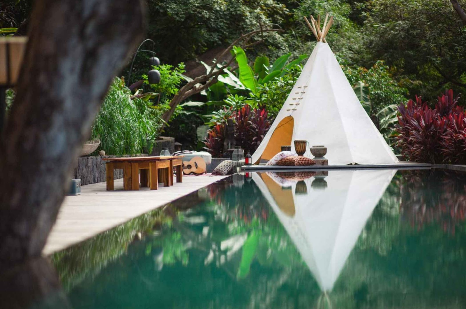 Ayahuasca benefits. Behold Retreats, a wellness company that specialises in the therapeutic use of plant-based medicine to aid in personal and spiritual growth. Plant medicine luxury retreat, ayahuasca, psychedelics, psilocybin, 5-meo DMT. Science, infographics, research