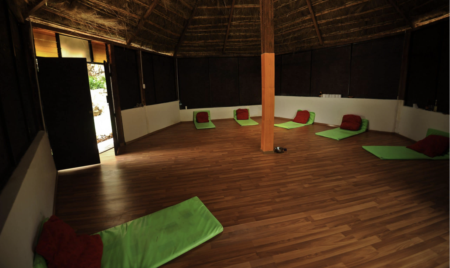 Entikas Ayahuasca Retreats.Behold Retreats, a wellness company that specialises in the therapeutic use of plant-based medicine to aid in personal and spiritual growth. Plant medicine luxury retreat, ayahuasca, psychedelics, psilocybin, 5-meo DMT. Science, infographics, research