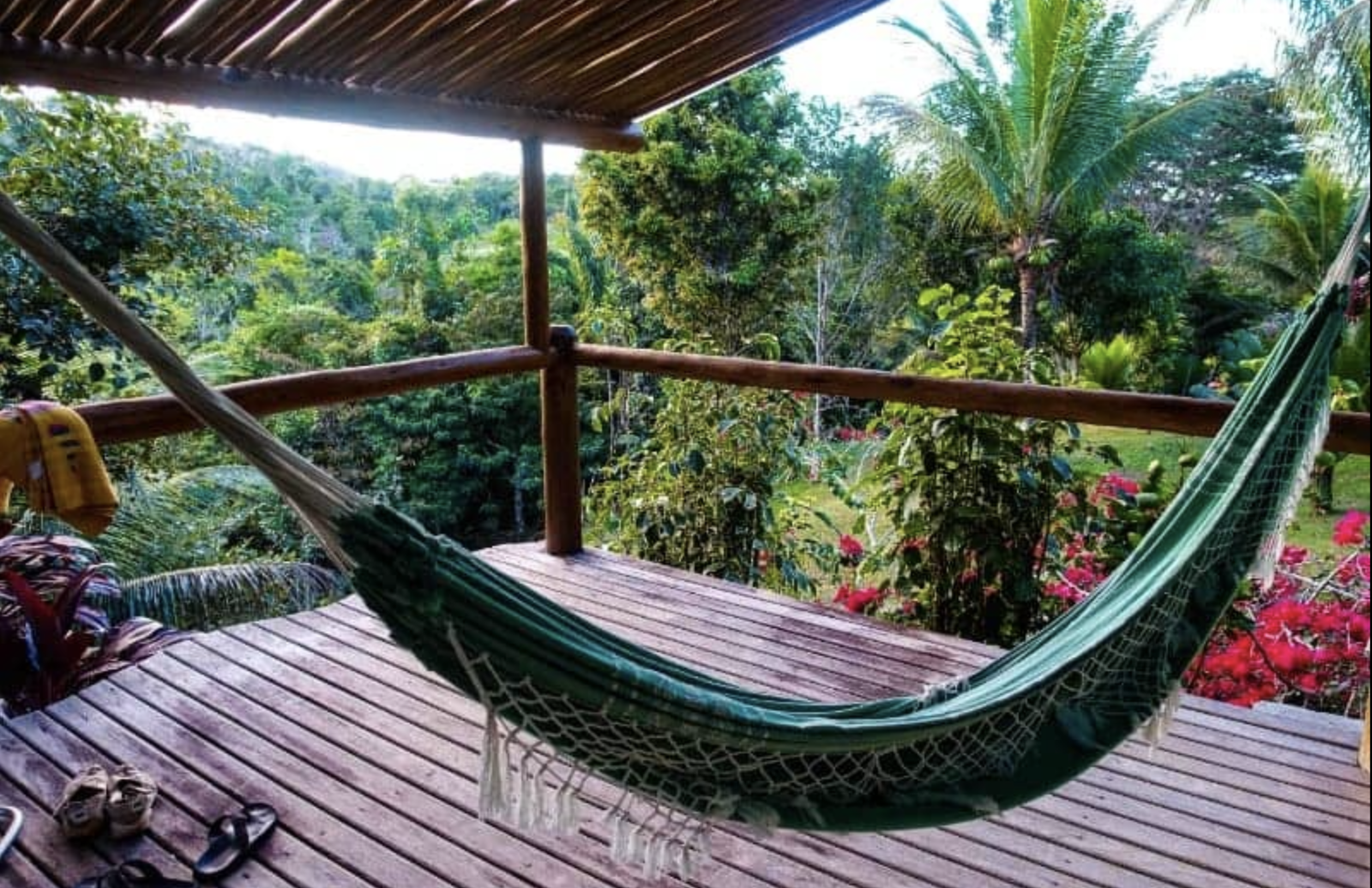 Spirit Vine Private Ayahuasca Retreats.Behold Retreats, a wellness company that specialises in the therapeutic use of plant-based medicine to aid in personal and spiritual growth. Plant medicine luxury retreat, ayahuasca, psychedelics, psilocybin, 5-meo DMT. Science, infographics, research