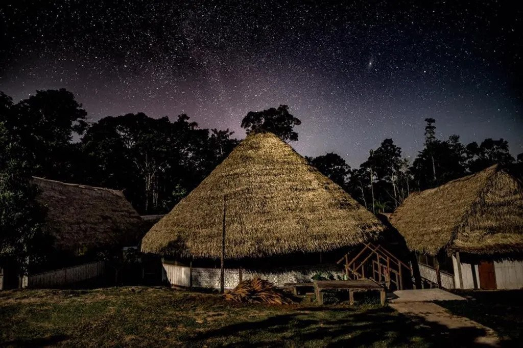 Behold Retreats, a wellness company that specialises in the therapeutic use of plant-based medicine to aid in personal and spiritual growth. Plant medicine, ayahuasca, psychedelics, psilocybin, 5-meo DMT. USA. Ayahuasca Foundation Ayahuasca Retreat Peru