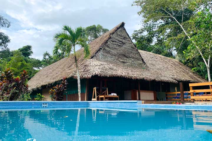 Behold Retreats, a wellness company that specialises in the therapeutic use of plant-based medicine to aid in personal and spiritual growth. Plant medicine, ayahuasca, psychedelics, psilocybin, 5-meo DMT. USA.  Blue Morpho Ayahuasca Retreat Peru