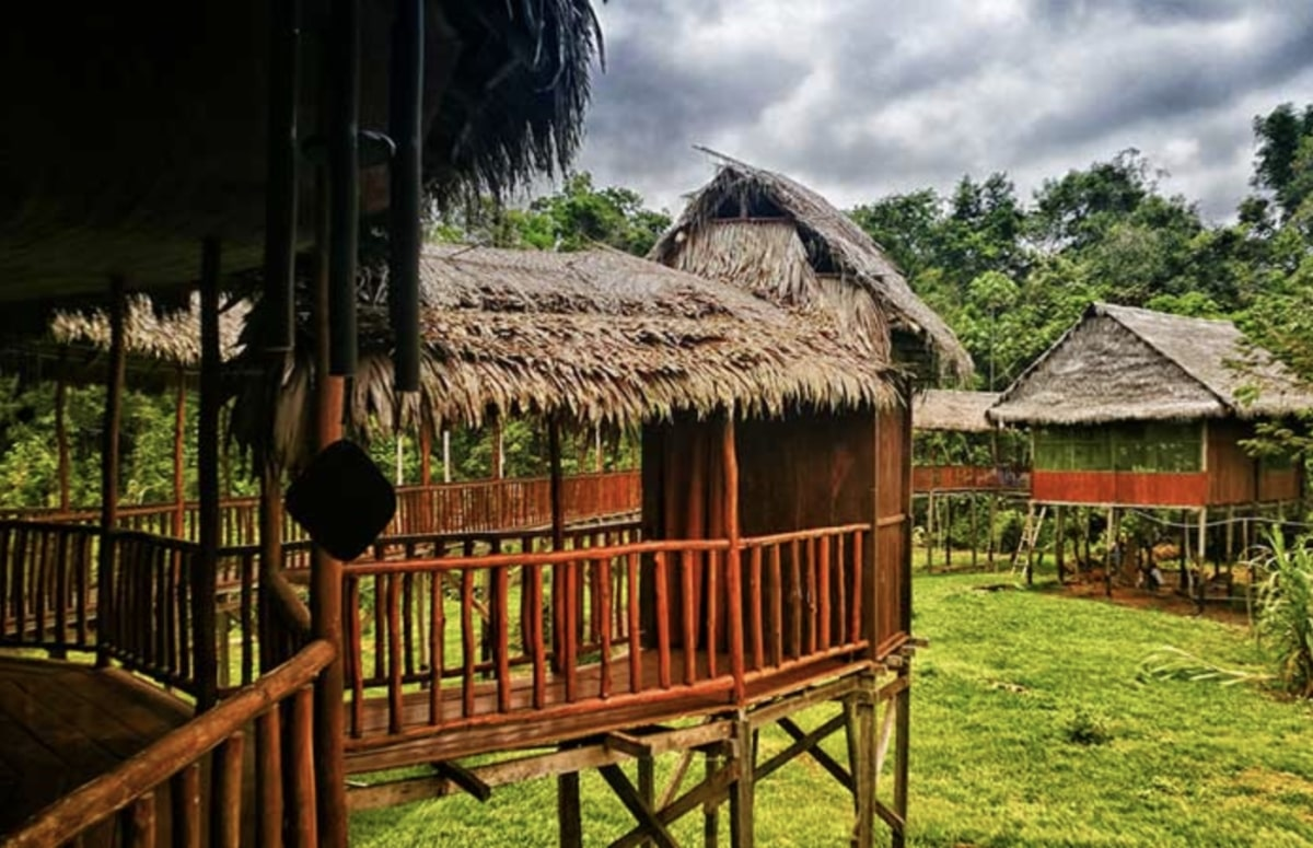 Behold Retreats, a wellness company that specialises in the therapeutic use of plant-based medicine to aid in personal and spiritual growth. Plant medicine, ayahuasca, psychedelics, psilocybin, 5-meo DMT. USA. Peru.Kawsay Ayahuasca Retreat
