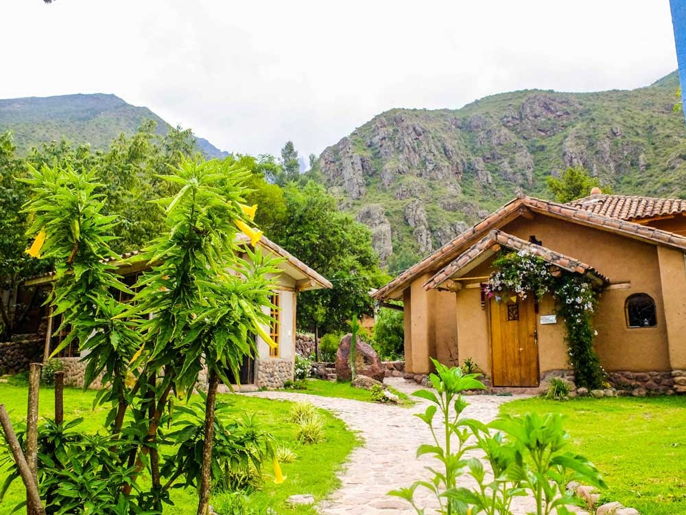Behold Retreats, a wellness company that specialises in the therapeutic use of plant-based medicine to aid in personal and spiritual growth. Plant medicine, ayahuasca, psychedelics, psilocybin, 5-meo DMT. USA. Peru.