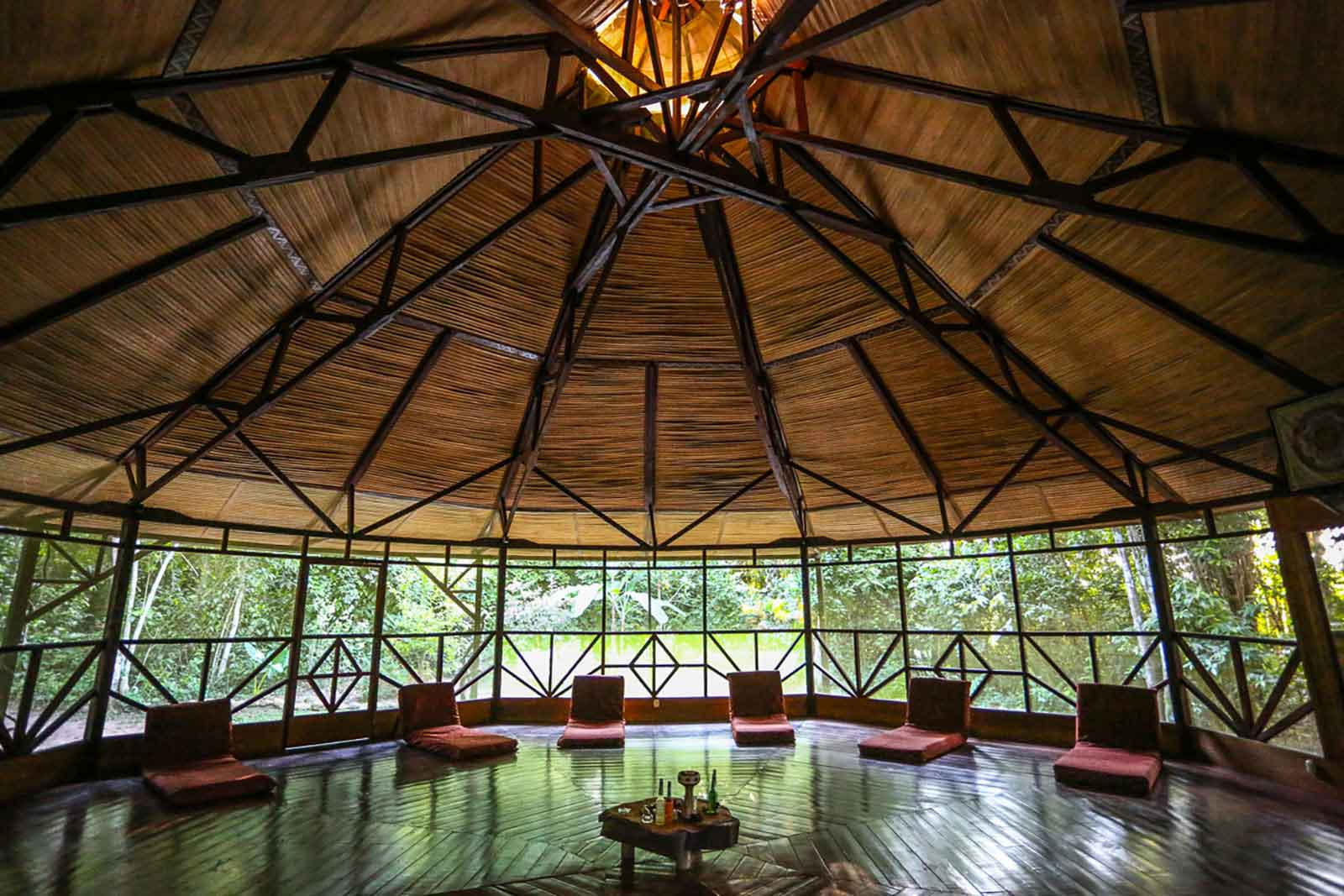 Behold Retreats, a wellness company that specialises in the therapeutic use of plant-based medicine to aid in personal and spiritual growth. Plant medicine retreat, ayahuasca, psychedelics, psilocybin, 5-meo DMT.