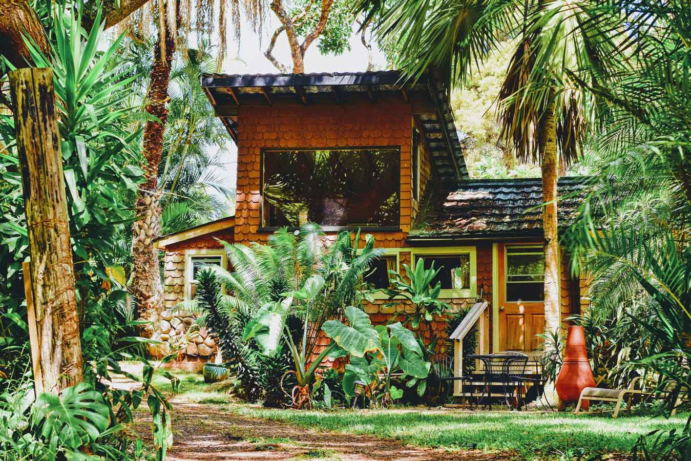 Behold Retreats, a wellness company that specialises in the therapeutic use of plant-based medicine to aid in personal and spiritual growth. Plant medicine luxury retreat, ayahuasca, psychedelics, psilocybin, 5-meo DMT.