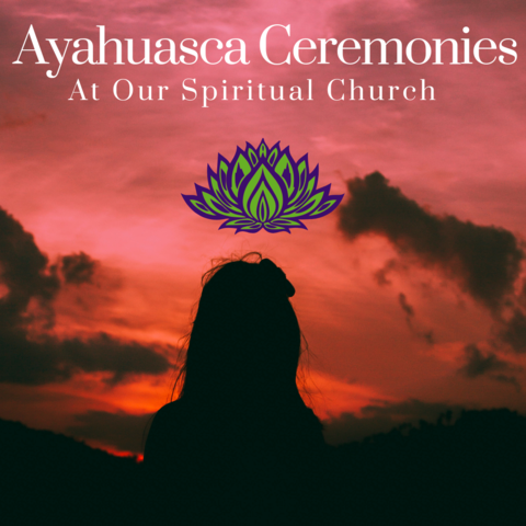 Sacred Therapy. Behold Retreats, a wellness company that specialises in the therapeutic use of plant-based medicine to aid in personal and spiritual growth. Plant medicine, ayahuasca, psychedelics, psilocybin, 5-meo DMT.
