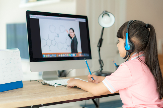 Best Practices for Virtual Teaching