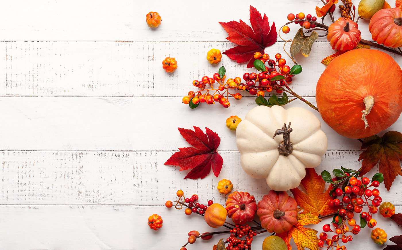 Happy Thanksgiving from Vitesse Worldwide