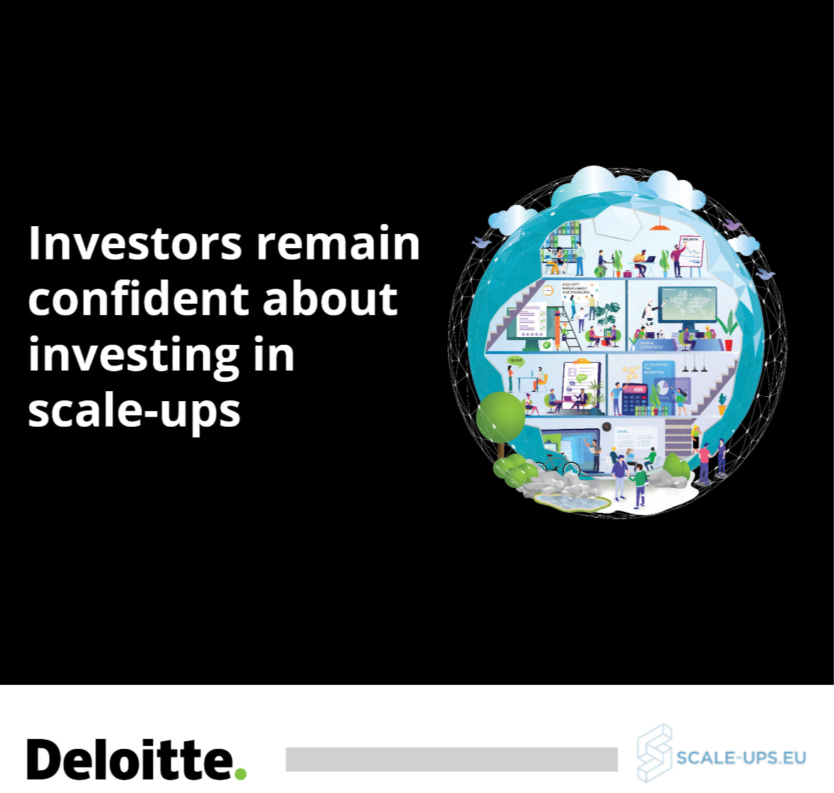 Deloitte Investor Survey 2020