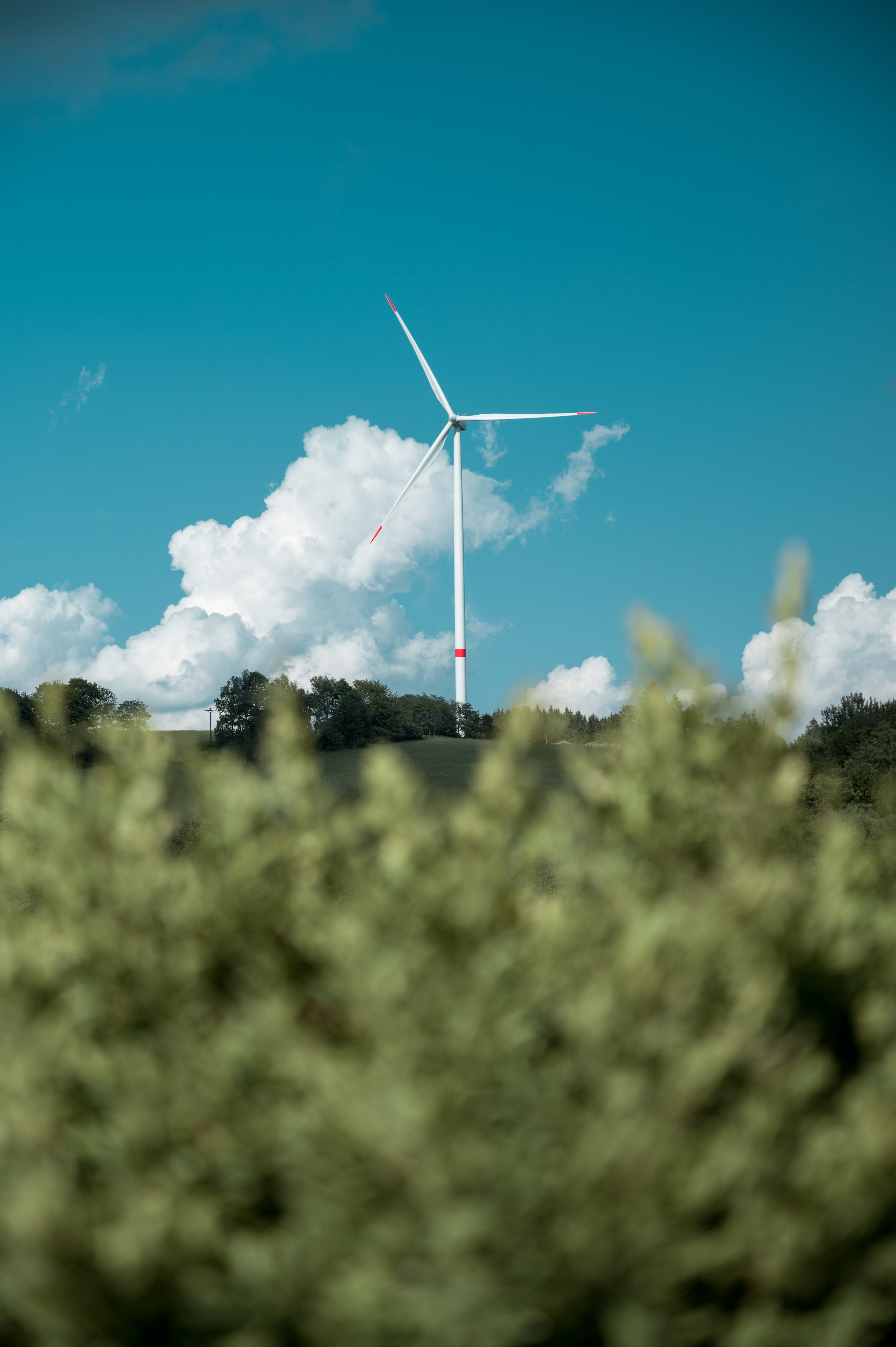 GreenTech: from buzz to must