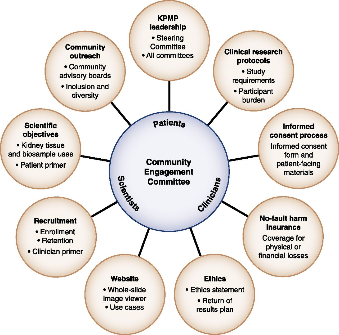 KPMP Community Engagement Committee publishes in CJASN