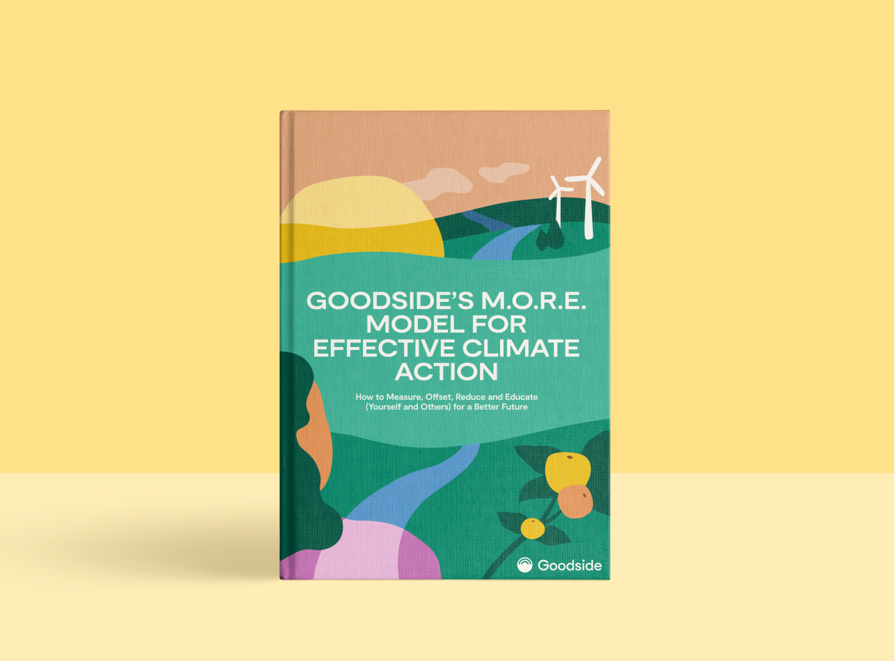 Get Our M.O.R.E Model eBook and Become a Climate Action Expert (Free Download)