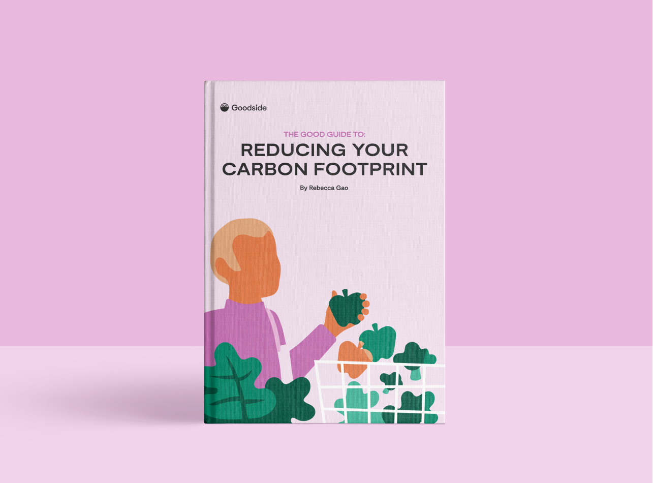 Get the Good Guide to Reducing Your Carbon Footprint (Free Download)