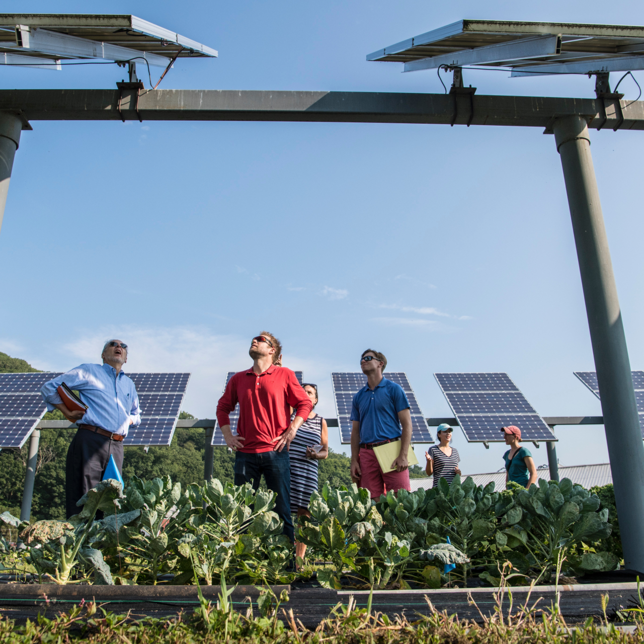 The Green Jobs of the Future Are Here Today