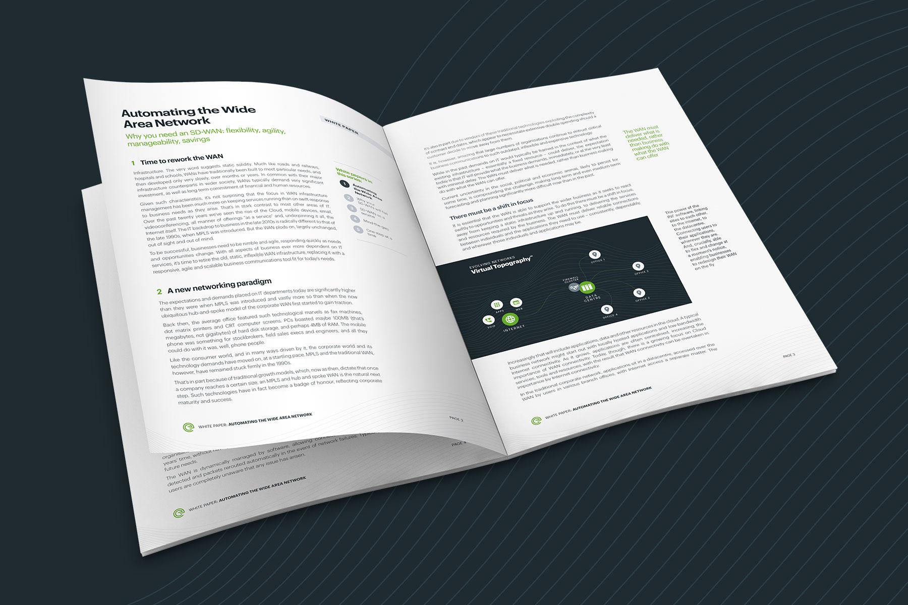 Evolving Networks Branding - White Paper