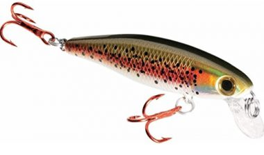 Dynamic Lures Fishing Trout Lure