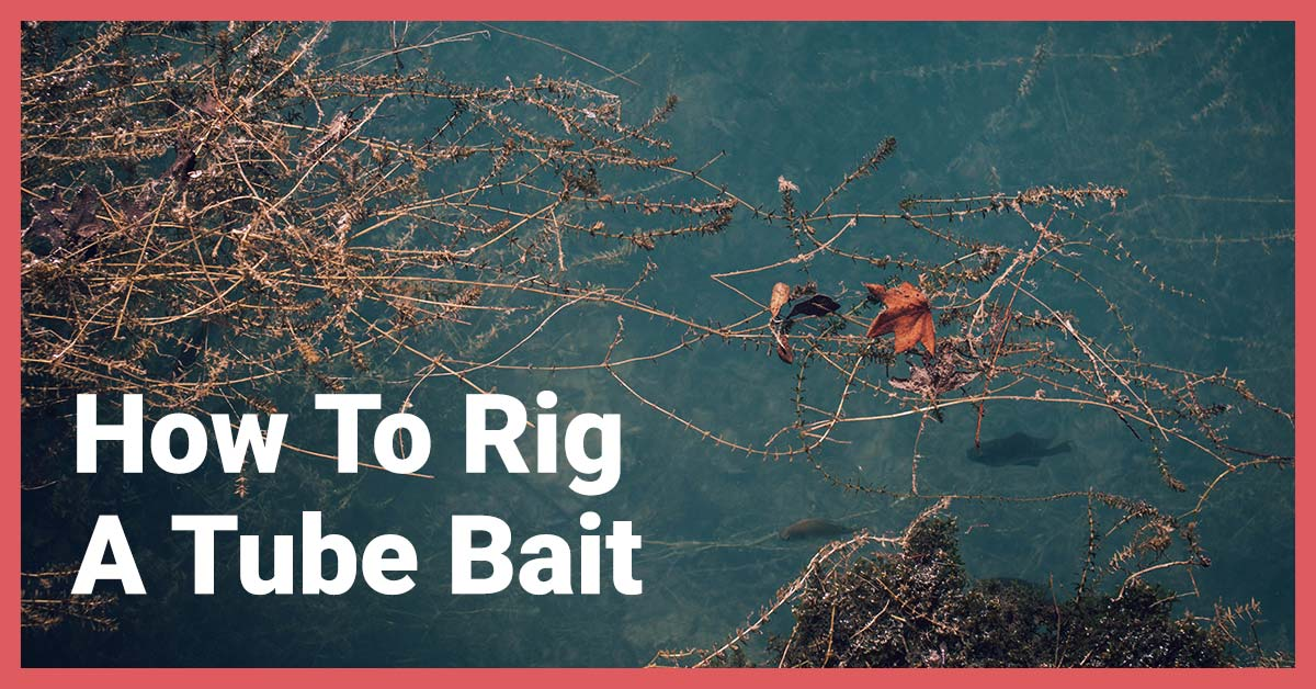 How To Rig a Tube Bait | Today I'm Outside