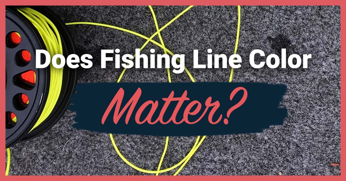 Does Fishing Line Color Matter? | Today I'm Outside