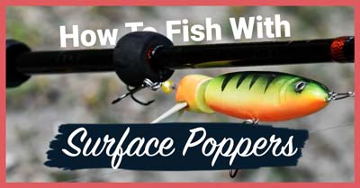 How To Fish With Surface Poppers   Today I'm Outside