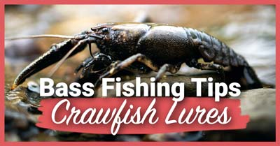 Bass Fishing Tips With Crawfish Lures | Today I'm Outside