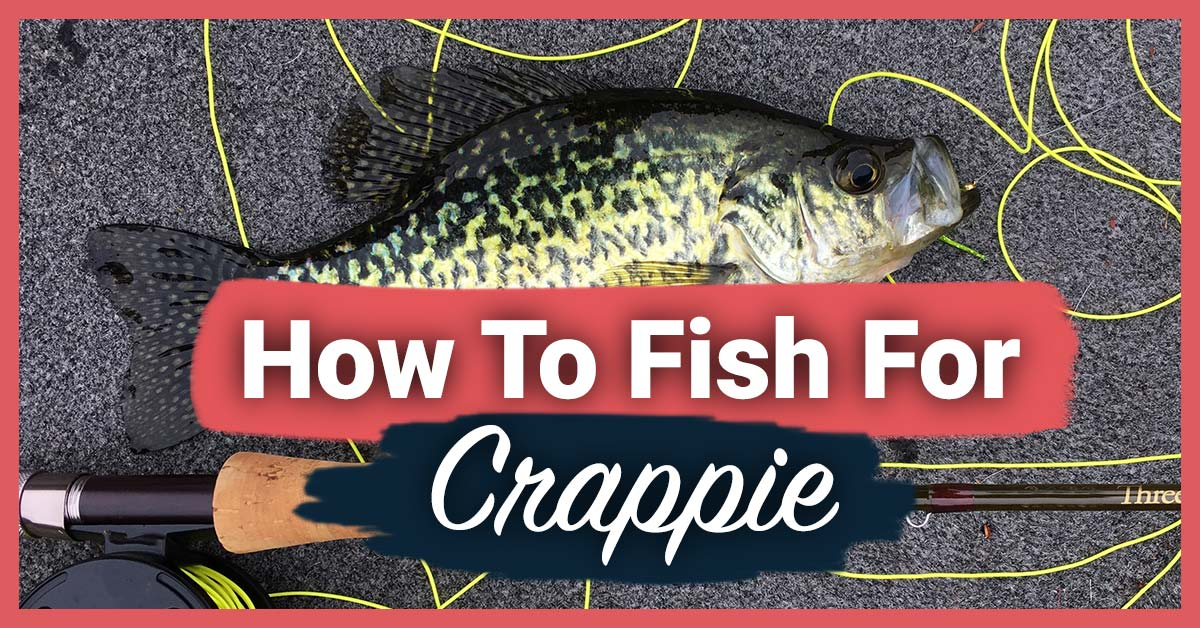 How To Fish For Crappie | Today I'm Outside