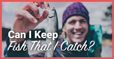 Can I Keep Fish That I Catch   Today I'm Outside