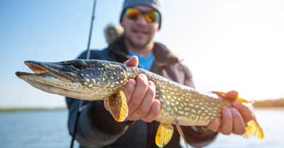 Northern Pike | Today I'm Outside
