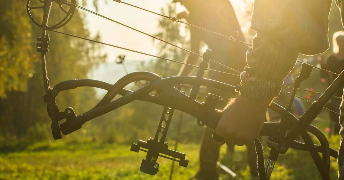 Choose A Compound Bow | Today I'm Outside