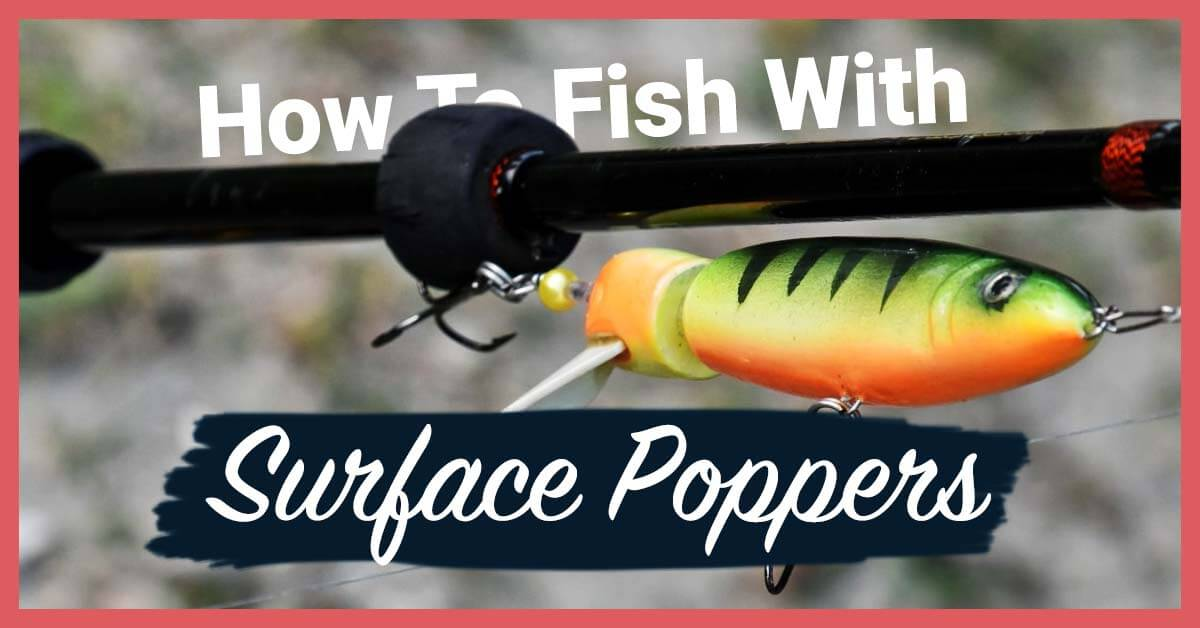 How To Fish With Surface Poppers | Today I'm Outside
