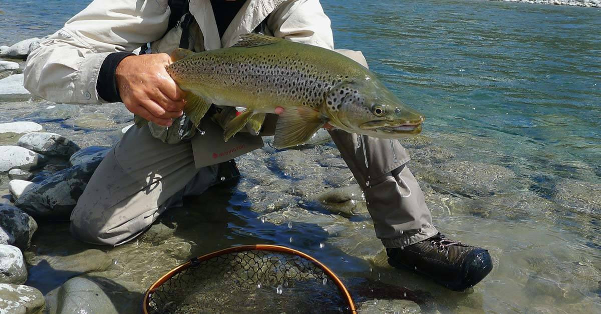 30 Best Trout Fishing Lures To Try Today | Today I'm Outside