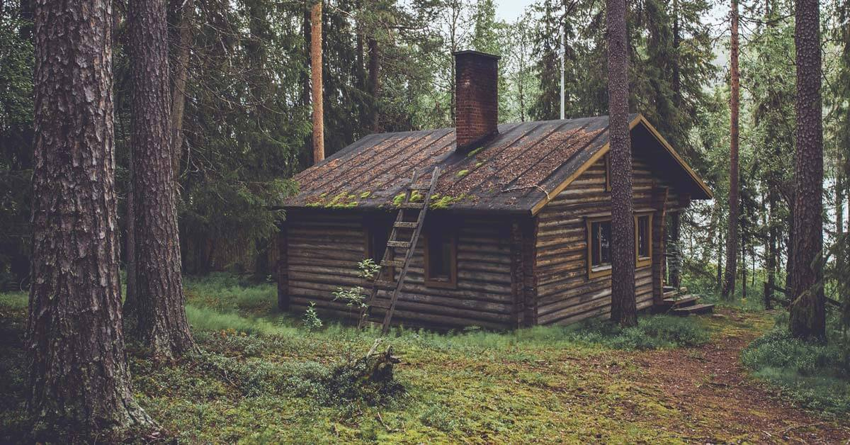 Can You Paint a Log Cabin? | Today I'm Outside