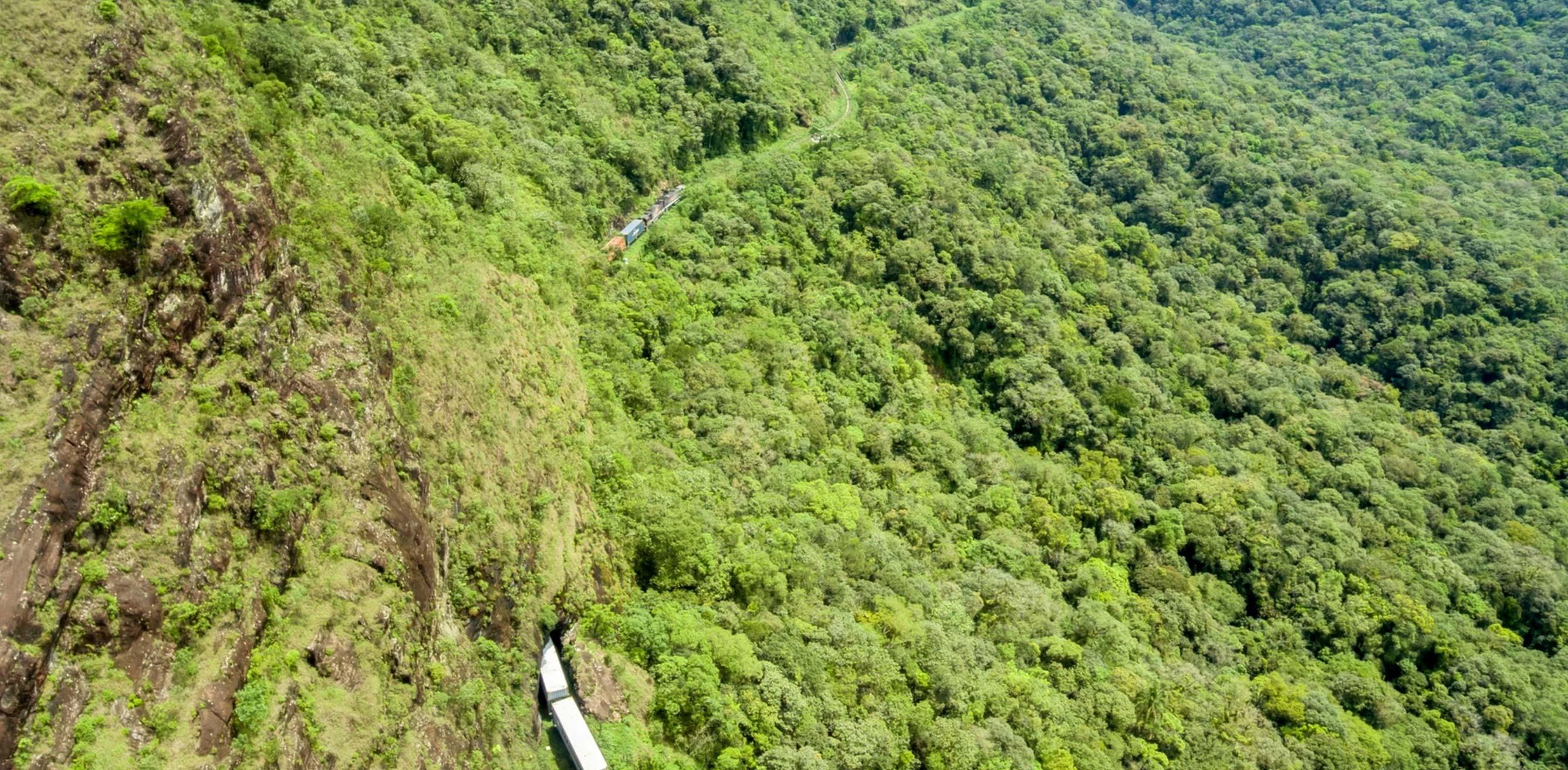 Serra Verde Express in the Marumbi State Park