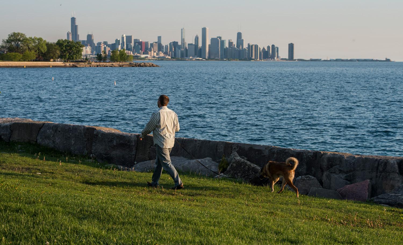 Person walking dog along lakefront